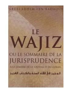 Le Wajiz ou le sommaire de la jurisprudence