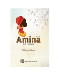 Amina...un roman